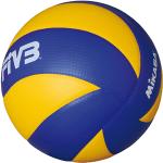 pallone giallo e blu